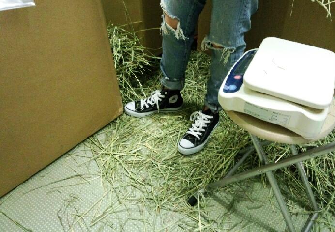 お気に入りの靴を汚させてすいませんでしたね~ジーパンはボロボロ?でいっか~でした 笑